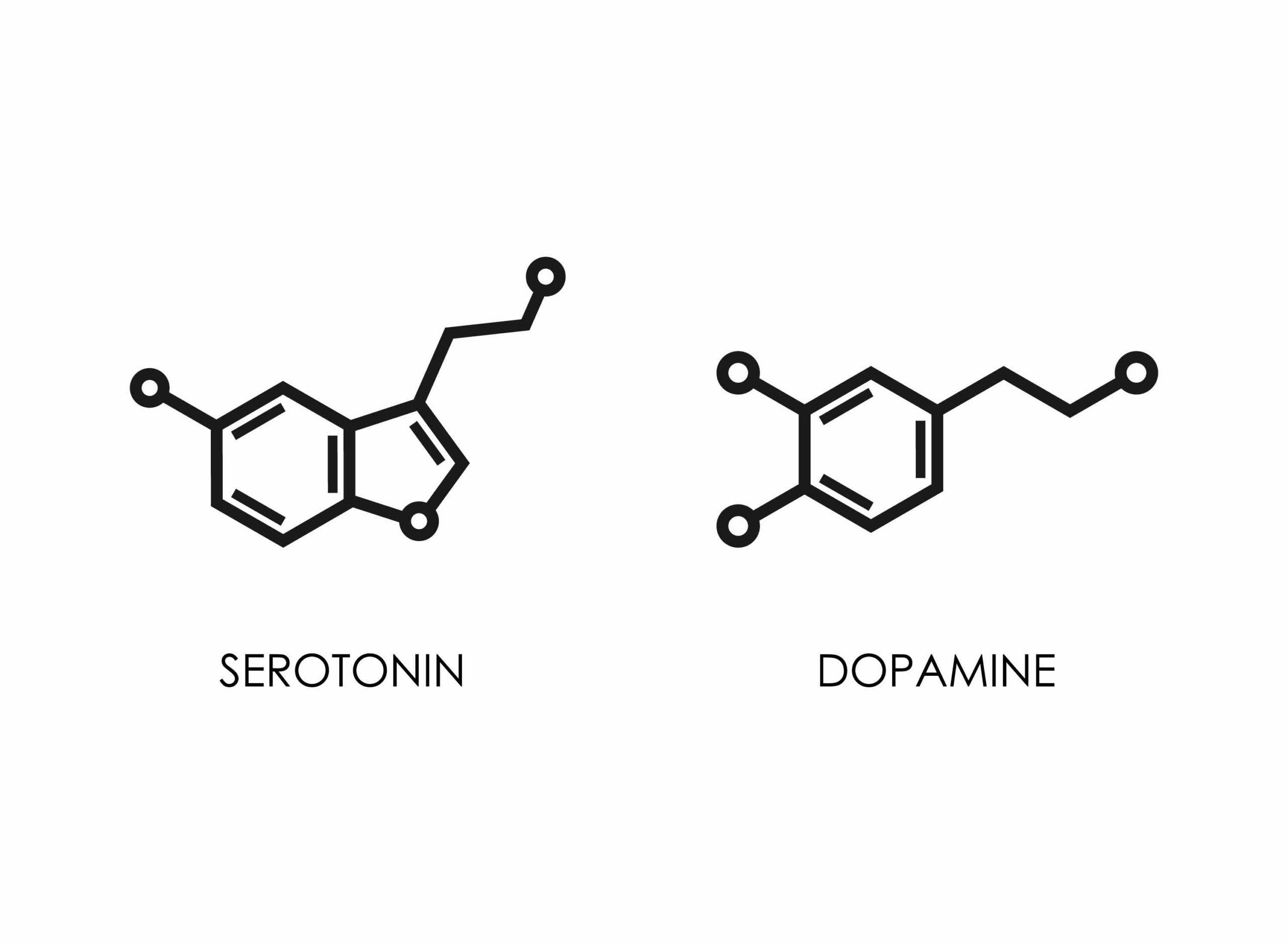 Sérotonine versus dopamine